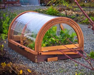 greenhouses advanced technology for protected horticulture books winter greenhouse gardening food green living