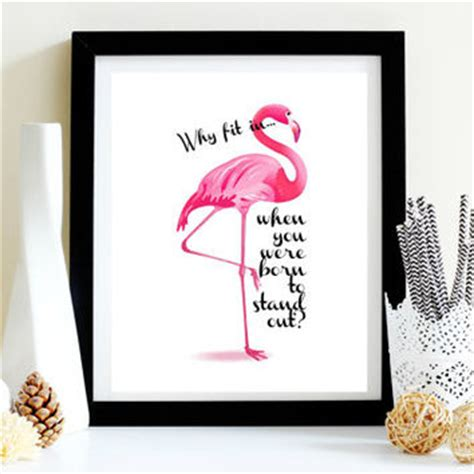 Pink flamingo why fit in best dr from prettyhappyprints on