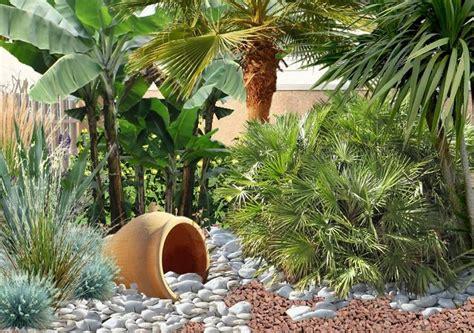 Jardin Min 233 Ral Cr 233 Er Un Jardin De Gravier Palmier Dessin S Pin L