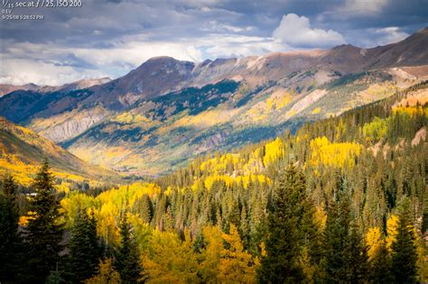 fall colors colorado colorado fall color information kit