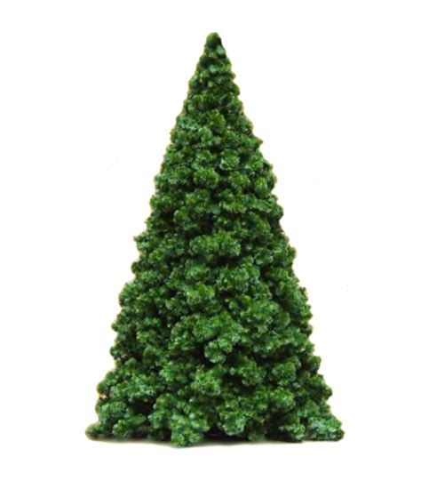 northwest conifer commercial branch tree all american