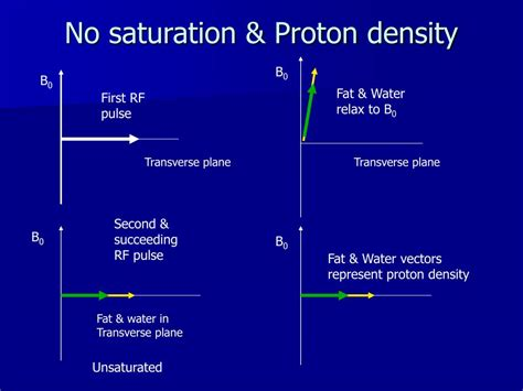 Density Of Proton by Ppt Pulse Sequences Effects Of Flip Angle On Saturation