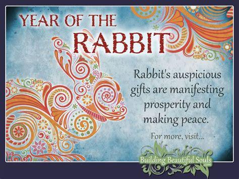 new year zodiac 1987 25 best ideas about zodiac rabbit on