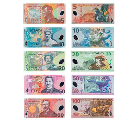 currency converter nz information of new zealand currency global exchange
