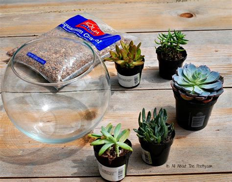 top 28 what you need for a terrarium how to make a