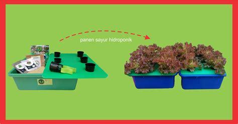 Starter Kit Hidroponik Murah paket starterkit murah jual alat bahan media hidroponik