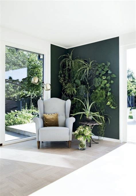 best plants for dark rooms 25 best ideas about dark green walls on pinterest dark