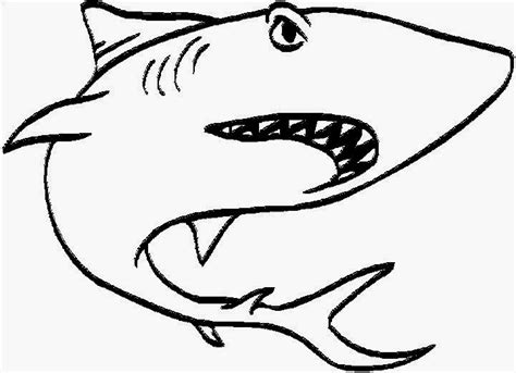 coloring page great white shark great white shark coloring pages