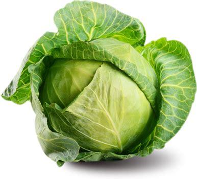vegetables png vegetable png transparent vegetable png images pluspng