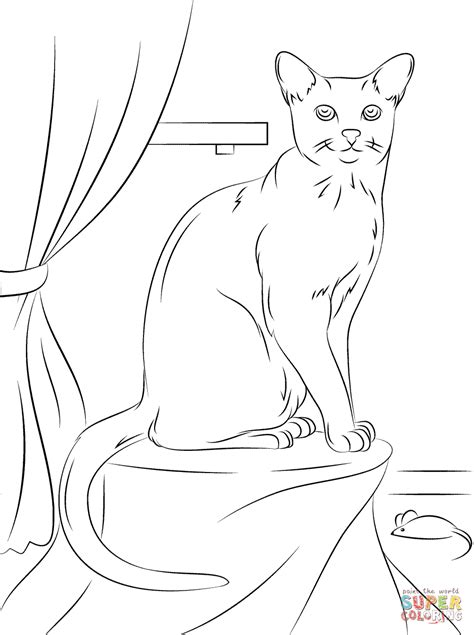 catological coloring book for cat 50 unique page designs for hours of cat coloring books pages the russian stripers