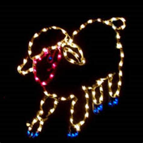 sheep lights lighted nativity sheep