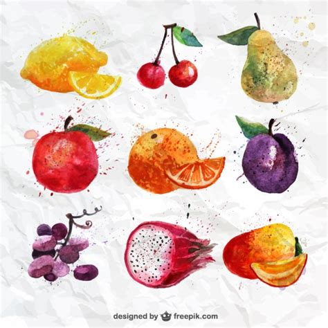 fruit free painted fruits collection vector free
