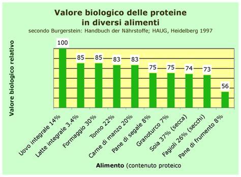 alimenti con aminoacidi proteine negli alimenti tabella e valore biologico