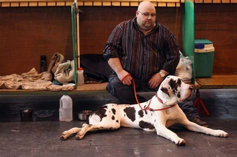 Kennel Assistant Salary by 12 Working With Animals That Pay Pretty Well