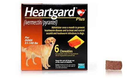 heartgard for dogs heartgard plus for dogs heartworm treatment and prevention petcarerx