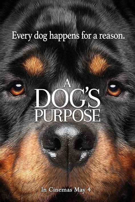 a s purpose on netflix best 25 a dogs purpose ideas on january 27 quotes and