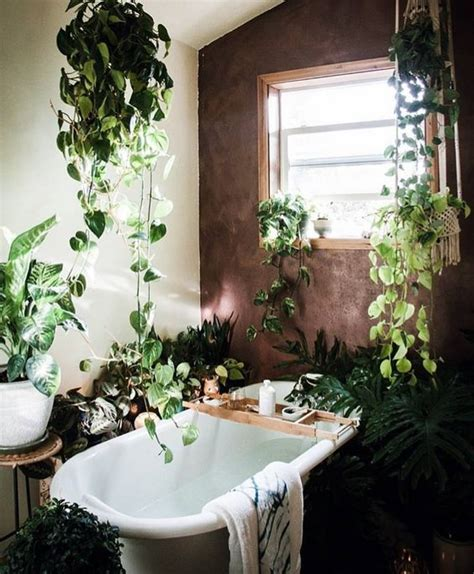 Salle De Bain Jungle by Ambiance Jungle Dans La Salle De Bain Floriane Lemari 233