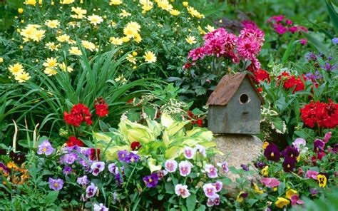 flower yard wallpaper flower garden wallpapers best wallpapers
