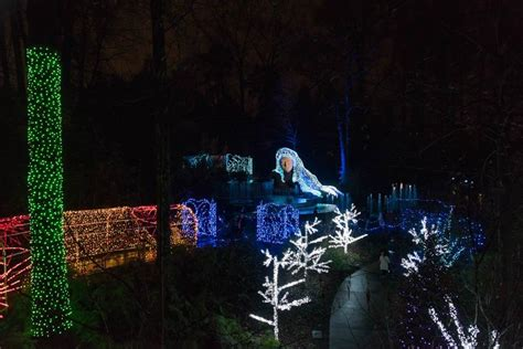 Botanical Garden Lights by Garden Lights Nights At The Atlanta Botanical Gardens The Aha Connection