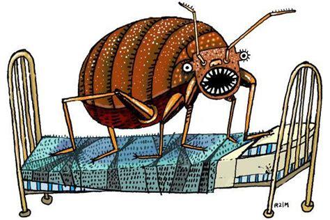 bed bugs las vegas heat bed bugs treatment las vegas prochem pest solutions