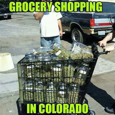 Shopping Cart Meme - grocery shopping in colorado funny pics memes