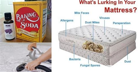 How Do You Get Stains A Mattress by What S Lurking In Your Mattress Live Healthy With Patty