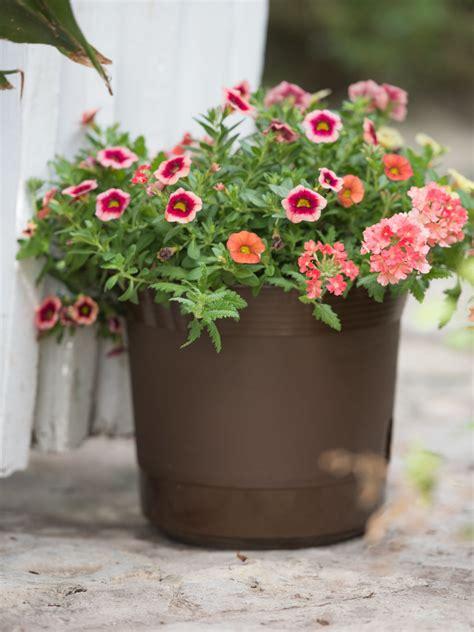 eezy gro  watering planters flower pots gardenerscom