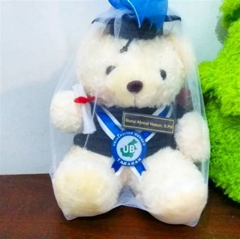 Boneka Wisuda Teddy teddy boneka wisuda borneo kado wisudaku