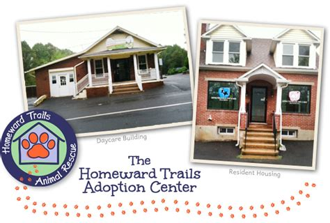puppy adoption centers become an adoption center sponsor 171 homeward trails animal rescue pet adoption in