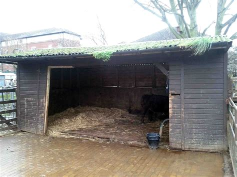 Cow Sheds by Cowshed Caign Surrey Docks Farm
