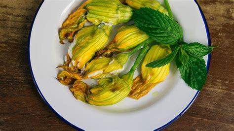 fiori di zucca ripieni di ricotta ricetta classica dei fiori di zucca ripieni di ricotta e