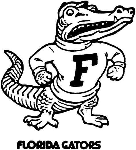 florida alligator coloring page florida gator drawing
