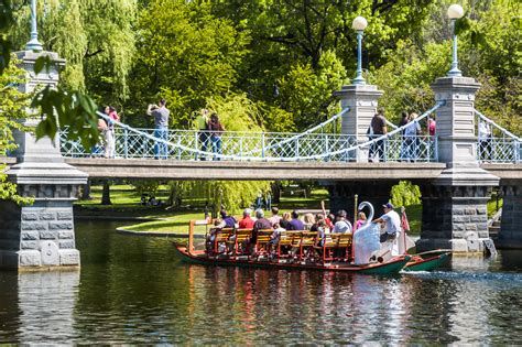swan boats boston public garden the swan boats are back for 2017 this weekend boston