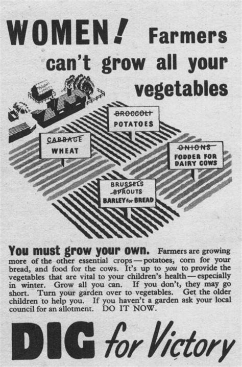Victory Garden Ww2 by Dig For Victory Acocks Green History Society New Website