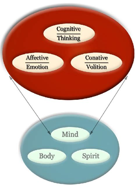 cognitive psychology interactive ebook theory process and methodology books educational psychology interactive systems model of human