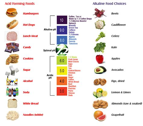 Acid/Alkaline Food Chart ALCALIZE YOUR BODY NOW! Seven