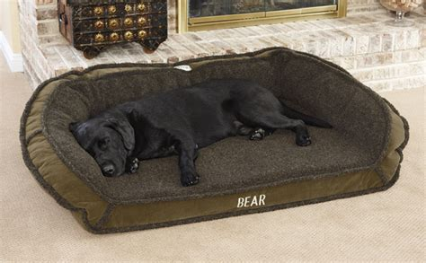 tempur pedic dog beds tempur pedic dog bed orvis tempur pedic 174 deep dish dog