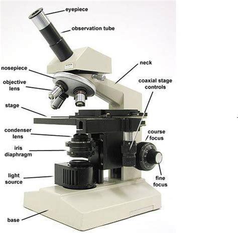 light microscopy clipart binocular microscope pencil and