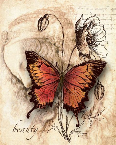 tattoo butterfly vintage 95 best images about butterflies on pinterest