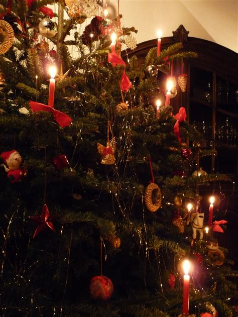 austria real christmas tree candles christmas tree