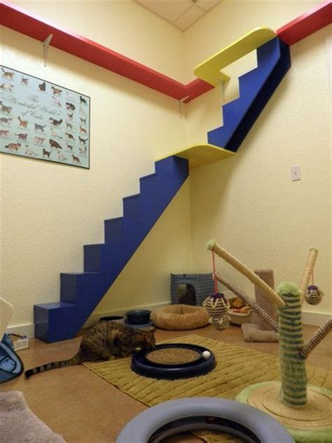 cat room cat shelves and stairs design cats catstairs catshelves cat climbs via stairs shelves