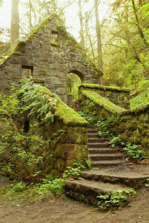 Landscape Rock Oregon City Mossy Nature Photography Quot House Quot Moss Green Forest