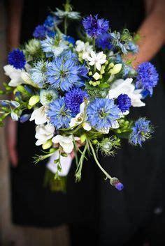white bouvardia white freesia blue cornflower blue