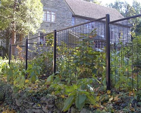ideas  welded wire fence  pinterest