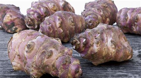 come cucinare il topinambur verdure di stagione autunno ricette cosa cucinare in autunno