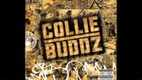 Collie Buddz Is Blind To You Haters by Collie Buddz Listen Free On Jango Pictures