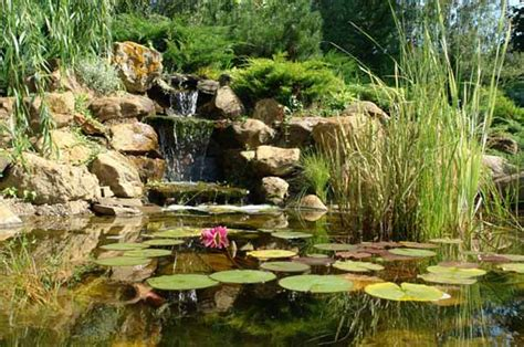 Small Ponds For Backyard by 21 Garden Design Ideas Small Ponds Turning Your Backyard