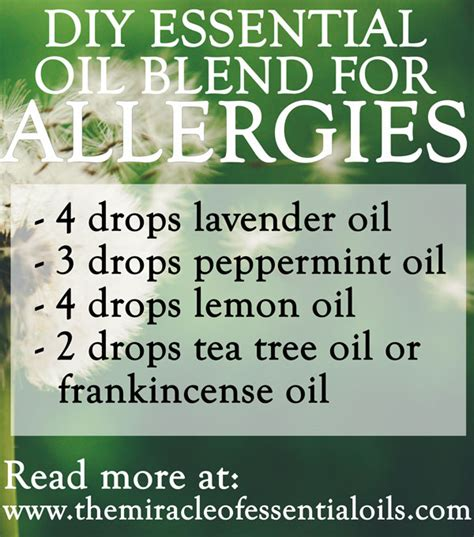 essential oils for skin allergies diy essential blend for allergies to get relief the miracle of essential oils