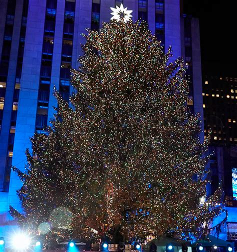 when do they light the nyc tree 7 trees to see in new york city the rockettes