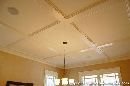 Removable Ceiling Panels The World S Catalog Of Ideas